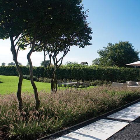 Moderne tuinontwerpen greenarchitects ontwerpt moderne tuinen - Te dekken moderne tuin ...