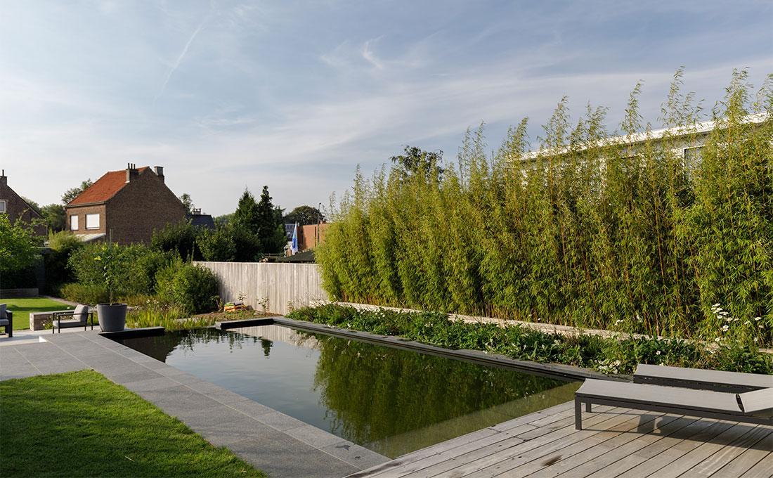 135-zwemvijver-biologische-filter-aanleg-tuinarchitect-37.jpg