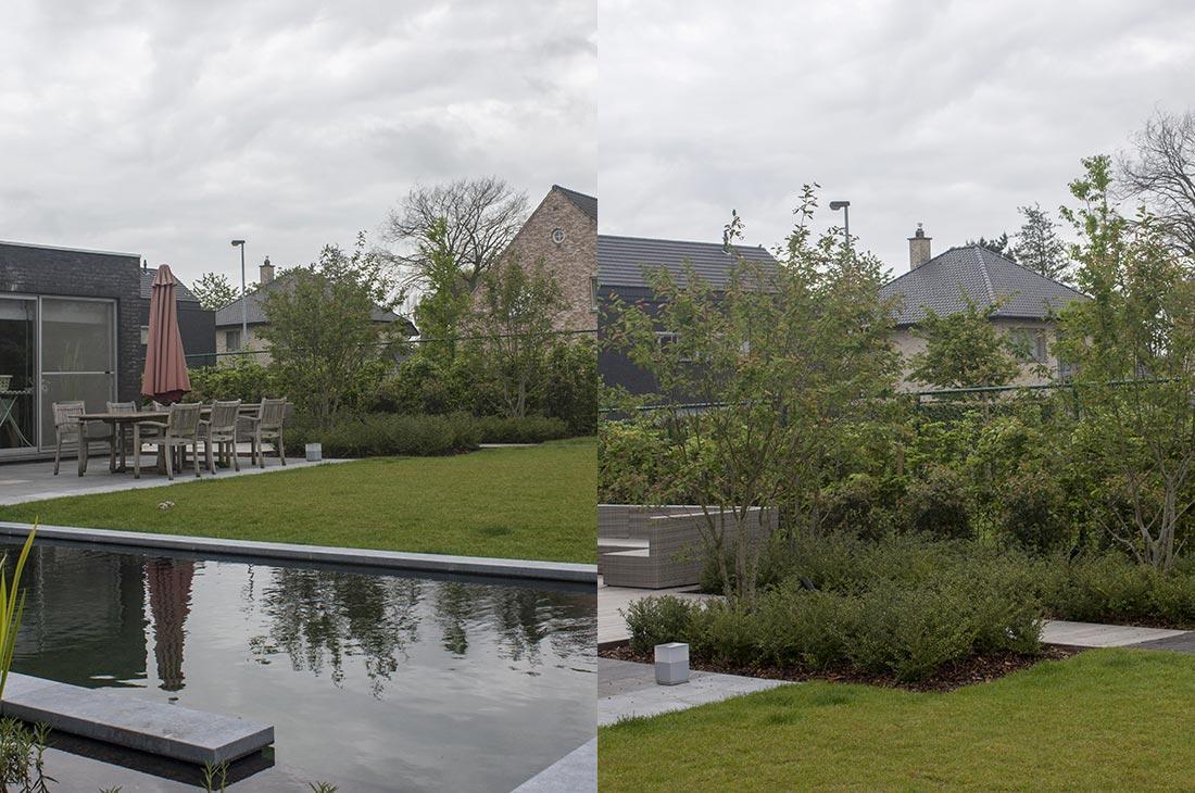 136-zwemvijver-verlichting-hout-terras-filter-meerstammig-multistem-40.jpg