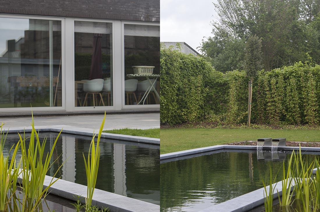 136-zwemvijver-verlichting-hout-terras-filter-meerstammig-multistem-45.jpg