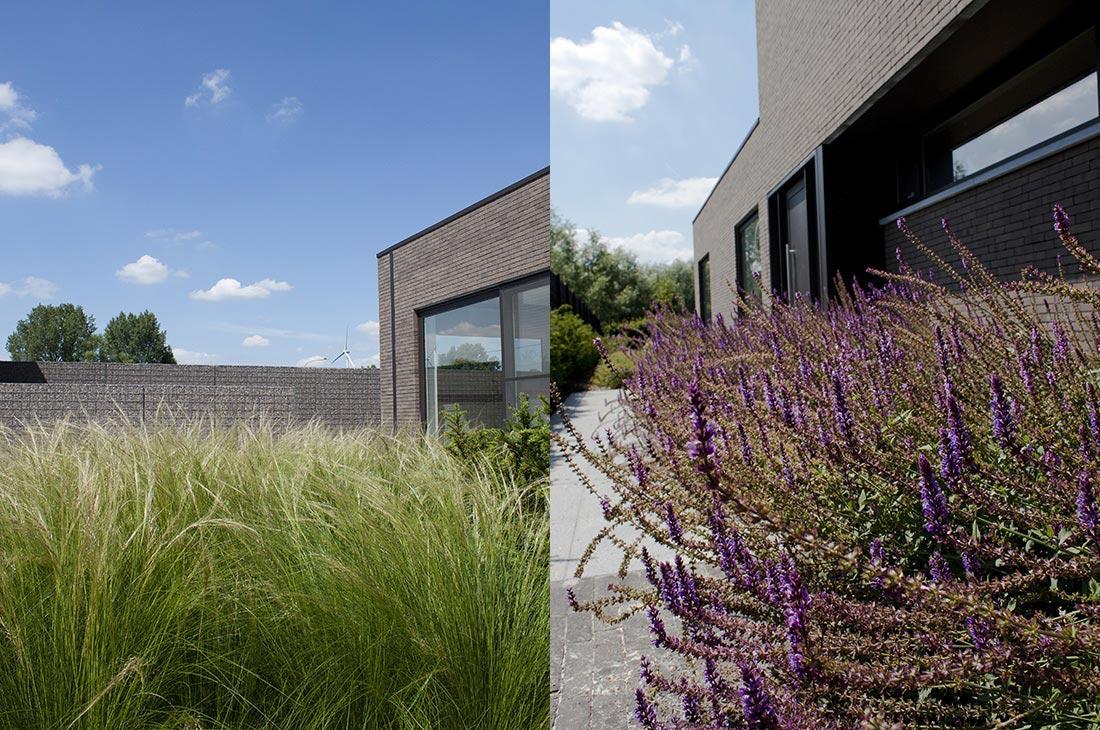 138-kleiklinkers-vandemoortel-eccogravel-haagblok-grassen-modern-graniet-voortuin-hersft-53.jpg