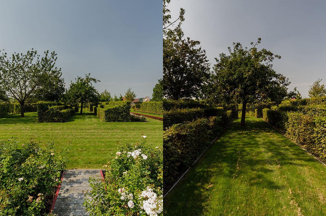 141-parktuin-grotetuin-rozentuin-topiary-geschoren-haagstructuur-hagen-20.jpg
