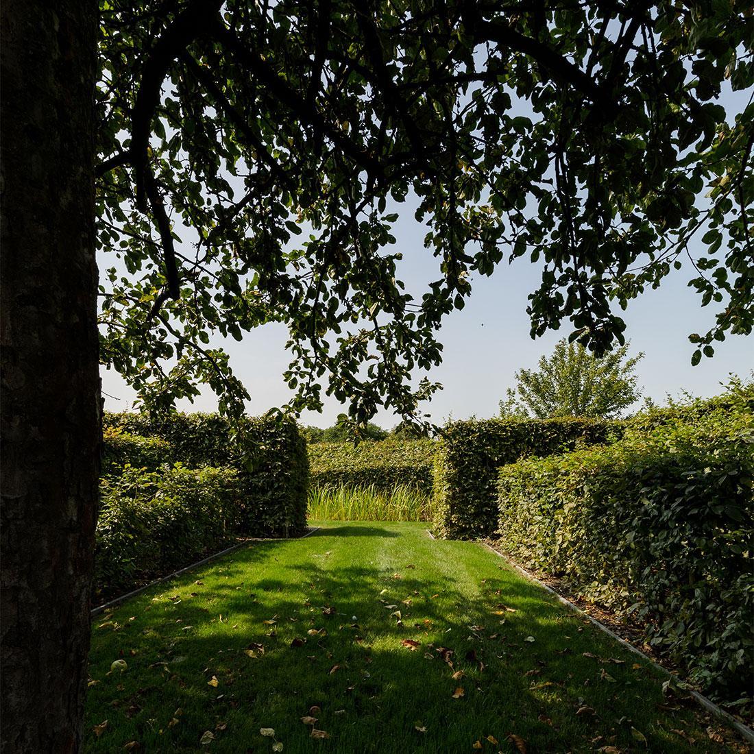 141-parktuin-grotetuin-rozentuin-topiary-geschoren-haagstructuur-hagen-22.jpg
