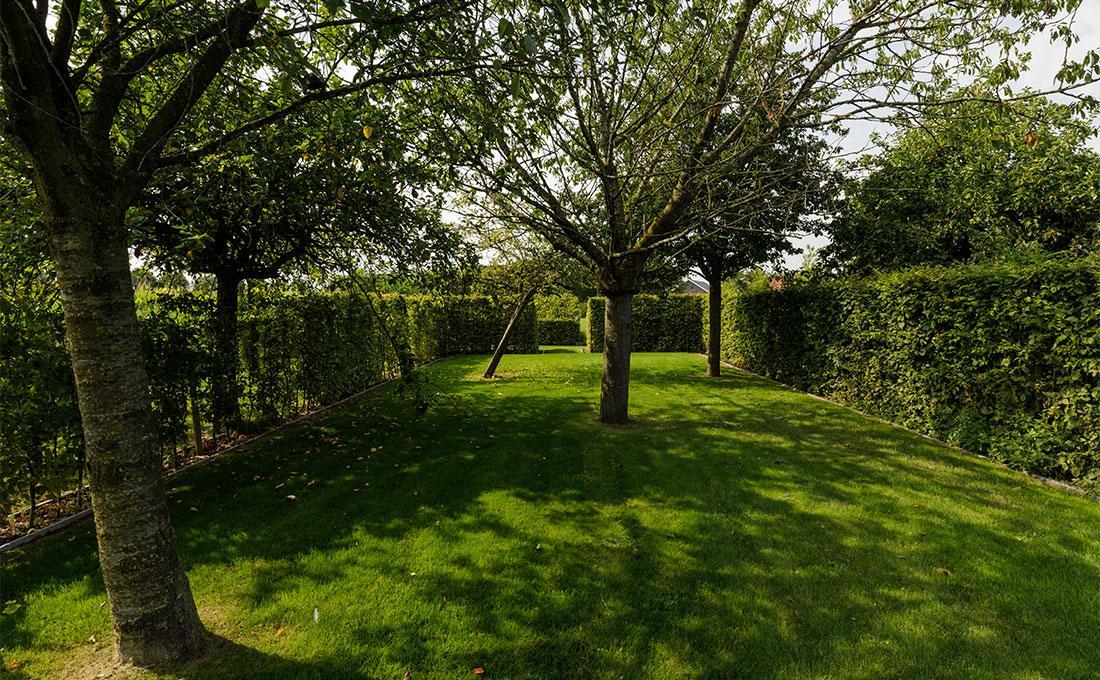 141-parktuin-grotetuin-rozentuin-topiary-geschoren-haagstructuur-hagen-24.jpg