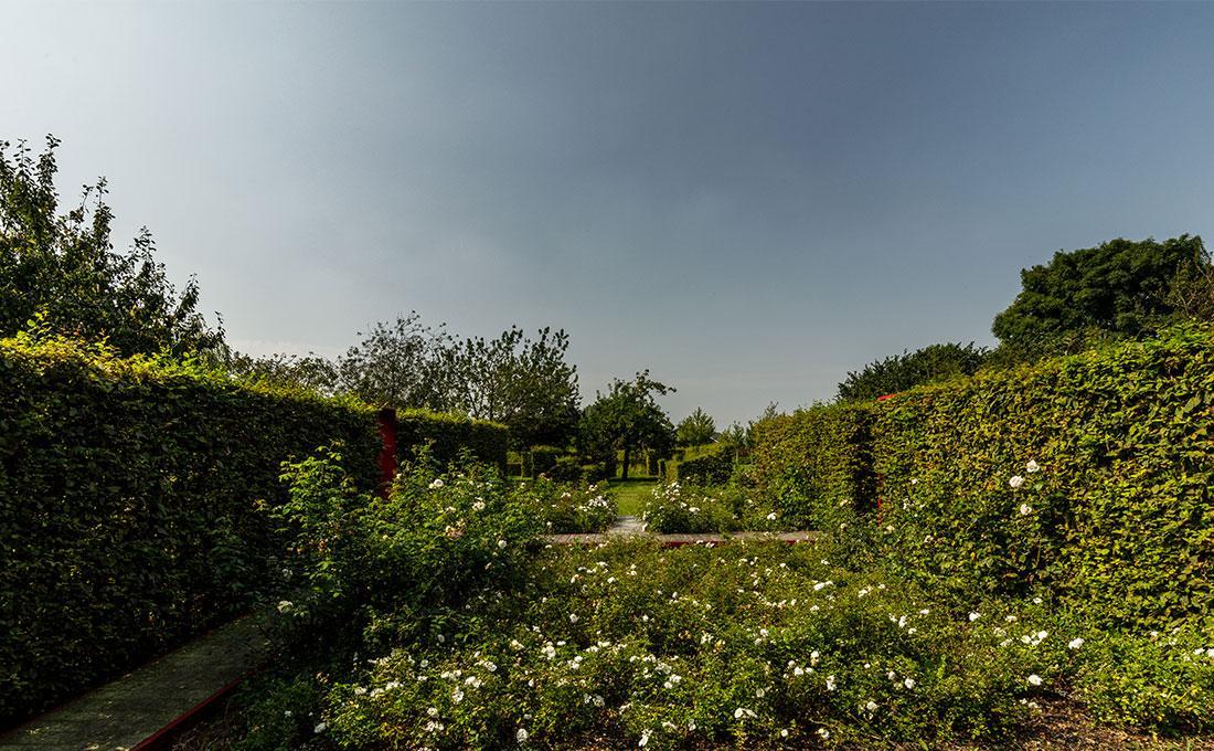 141-parktuin-vijver-water-grote-tuin-loopbrug-prairie-vasteplanten-spruyt-35.jpg