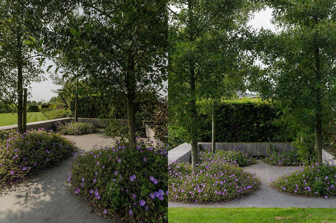 141-parktuin-vijver-water-grote-tuin-loopbrug-prairie-vasteplanten-spruyt-41.jpg