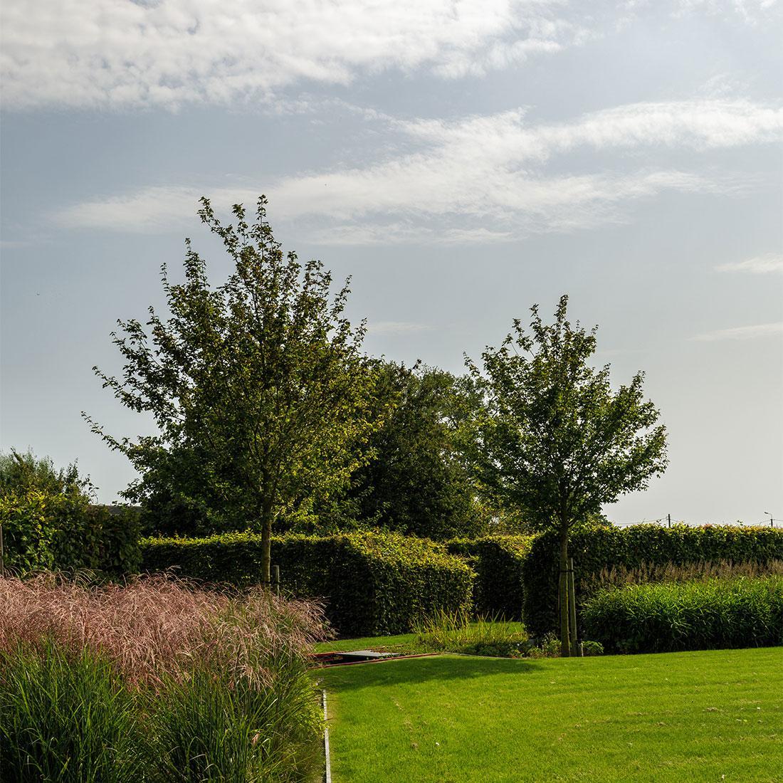 141-parktuin-vijver-water-grote-tuin-loopbrug-prairie-vasteplanten-spruyt-53.jpg