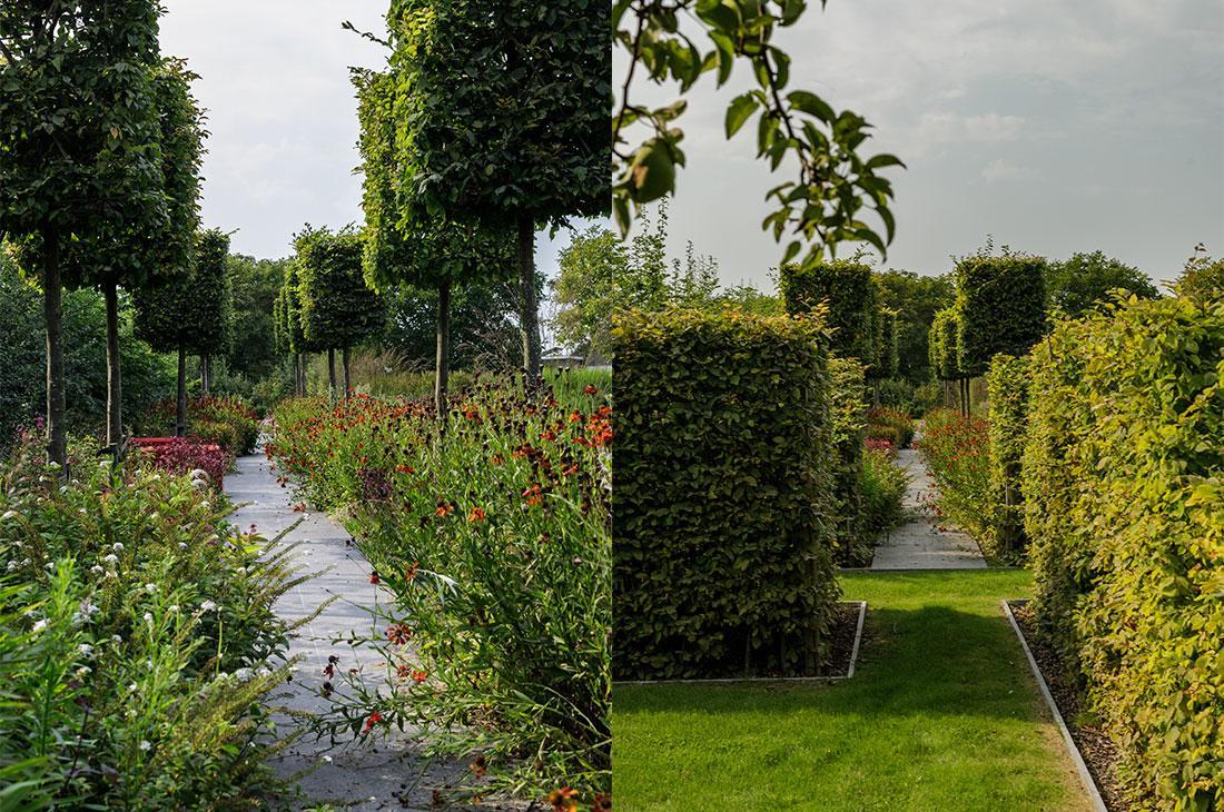 141-parktuin-vijver-water-grote-tuin-loopbrug-prairie-vasteplanten-spruyt-60.jpg