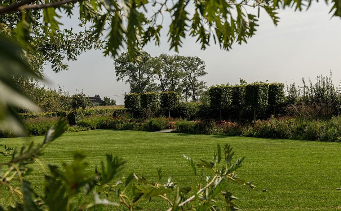 141-parktuin-vijver-water-grote-tuin-loopbrug-prairie-vasteplanten-spruyt-63.jpg