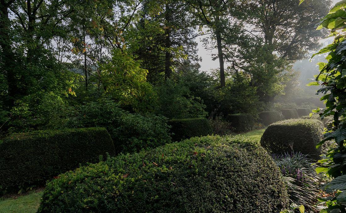 177-kasteeltuin-villatuin-multibat-topiary-carpinus-fagus-oprijlaan-natuur-natural-tuinarchitect-tuinontwerp-61.jpg