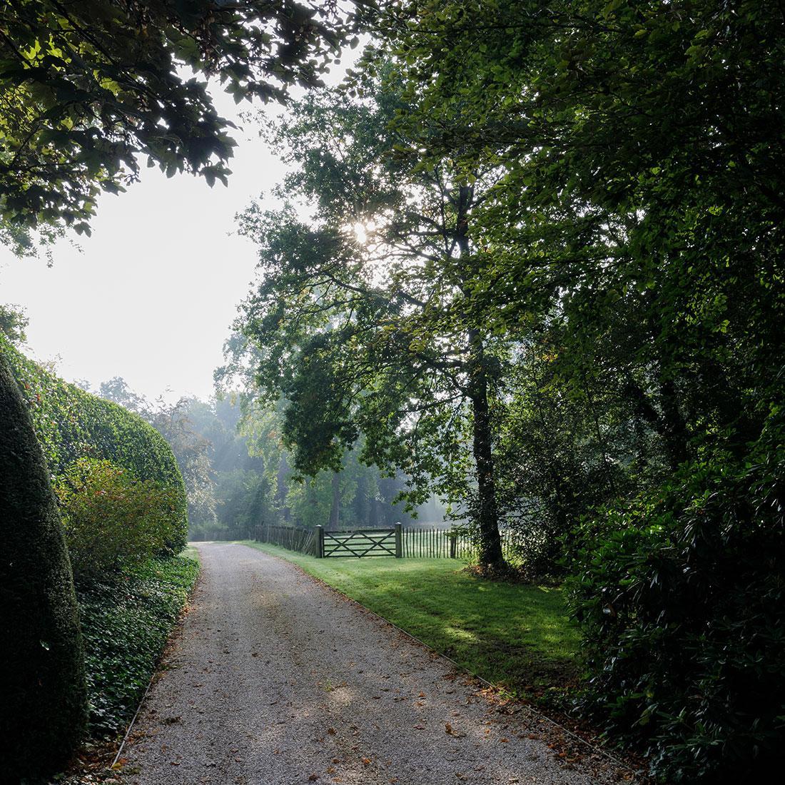 177-kasteeltuin-villatuin-multibat-topiary-carpinus-fagus-oprijlaan-natuur-natural-tuinarchitect-tuinontwerp-63.jpg
