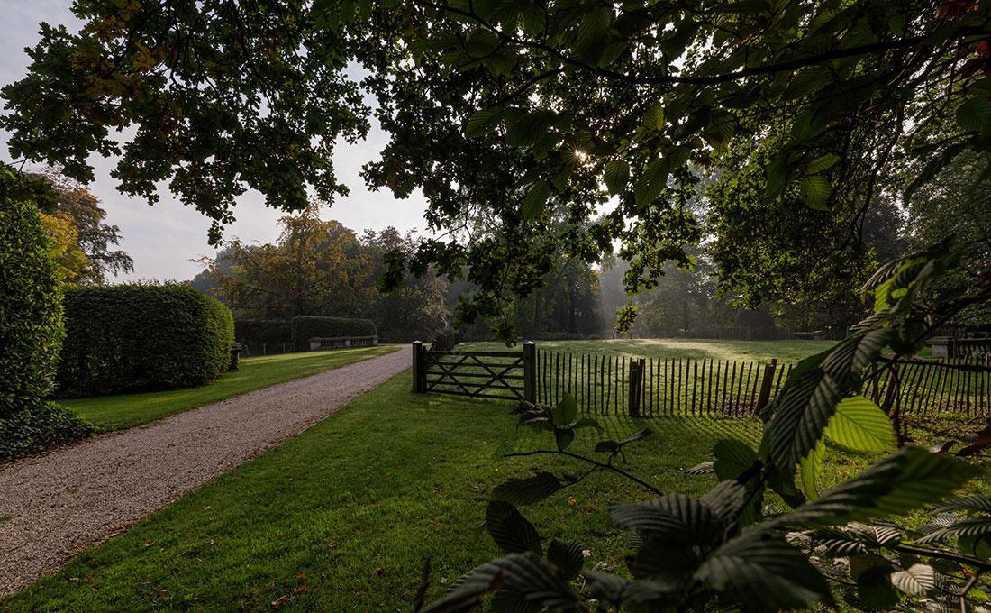 177-kasteeltuin-villatuin-multibat-topiary-carpinus-fagus-oprijlaan-natuur-natural-tuinarchitect-tuinontwerp-64.jpg