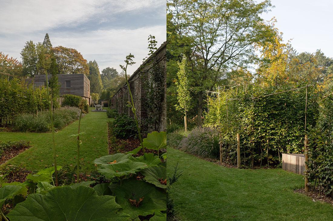 177-kasteeltuin-villatuin-multibat-topiary-carpinus-fagus-oprijlaan-natuur-natural-tuinarchitect-tuinontwerp-65.jpg