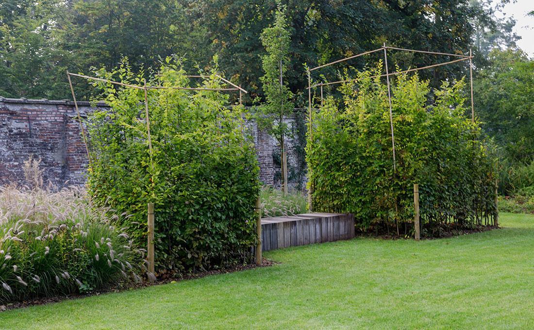 177-kasteeltuin-villatuin-multibat-topiary-carpinus-fagus-oprijlaan-natuur-natural-tuinarchitect-tuinontwerp-69.jpg