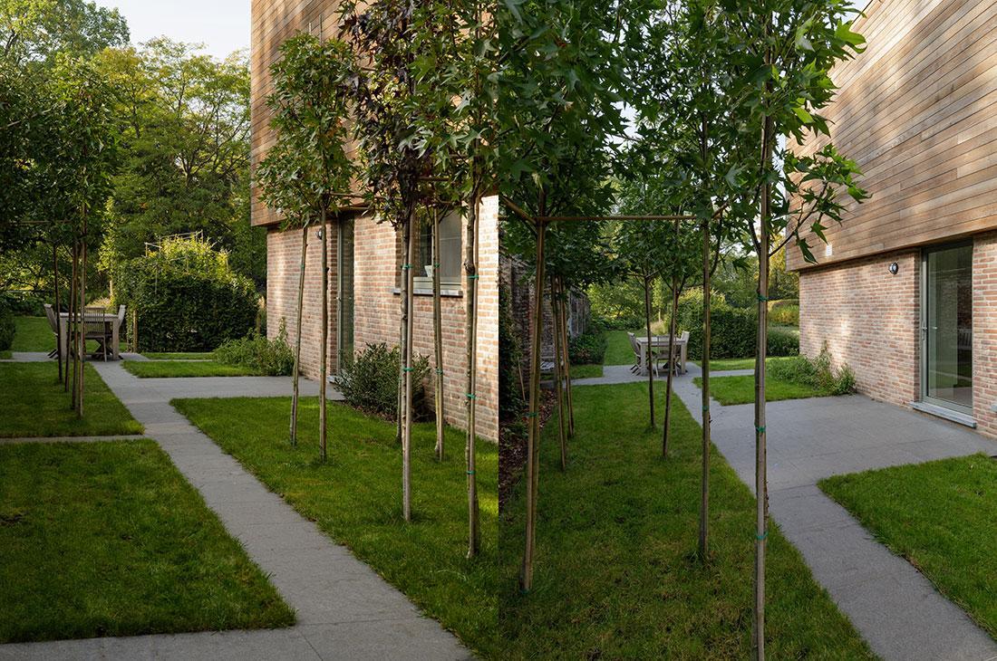 177-kasteeltuin-villatuin-multibat-topiary-carpinus-fagus-oprijlaan-natuur-natural-tuinarchitect-tuinontwerp-77.jpg
