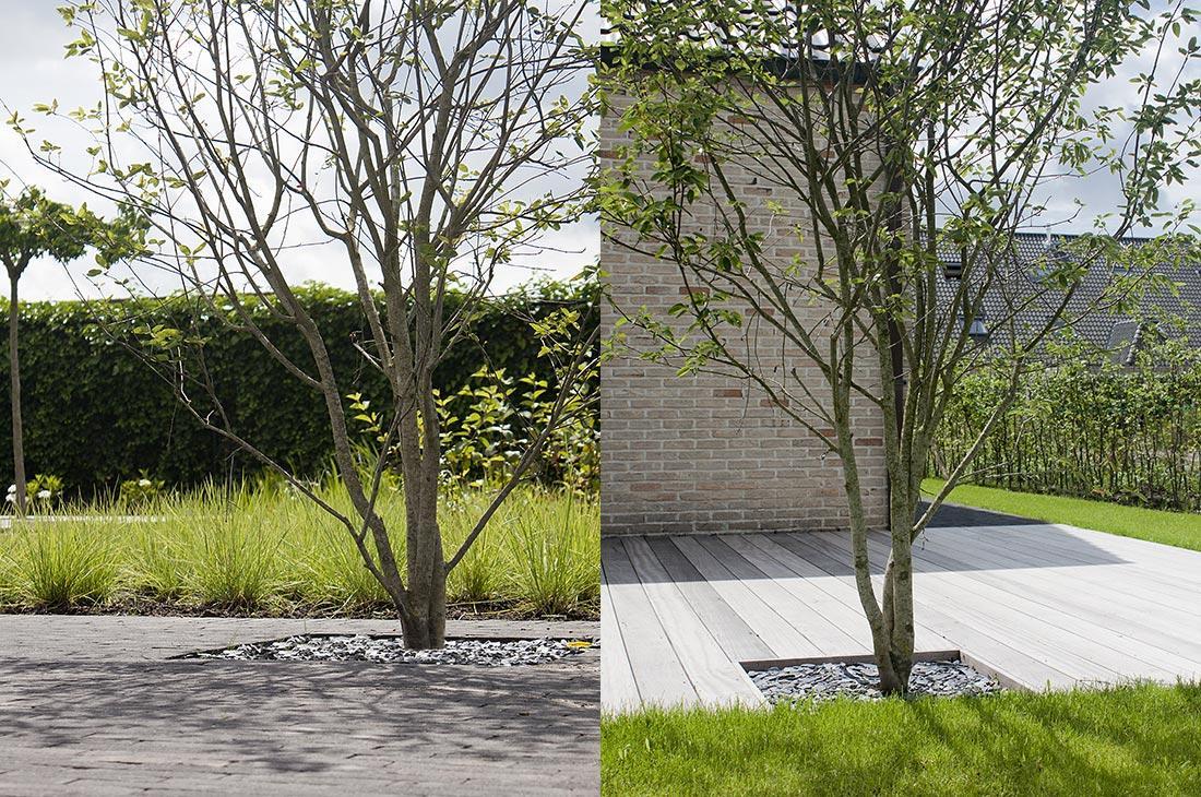 187-waterpartij-kleiklinkers-vandemoortel-dakbomen-tuinberging-spiegelvijver-55.jpg