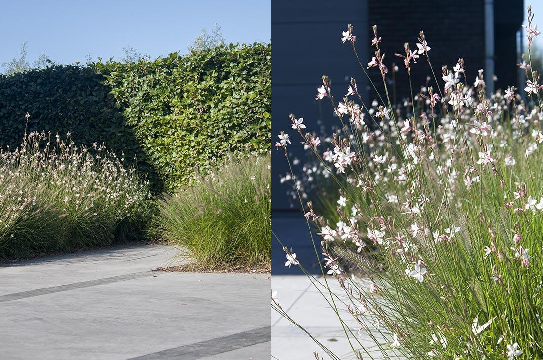 Polybeton-natuurlijk-tuin-tuinontwerp-156-51.jpg