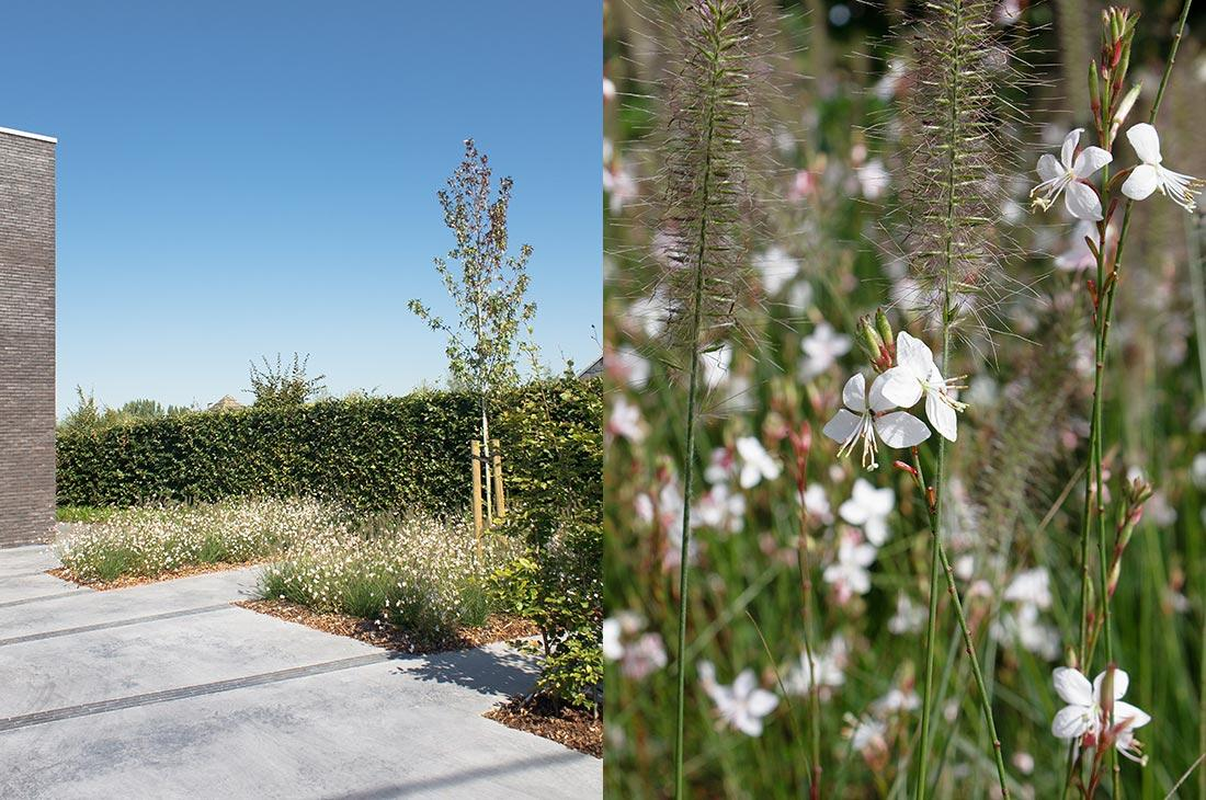 Polybeton-natuurlijk-tuin-tuinontwerp-156-56.jpg